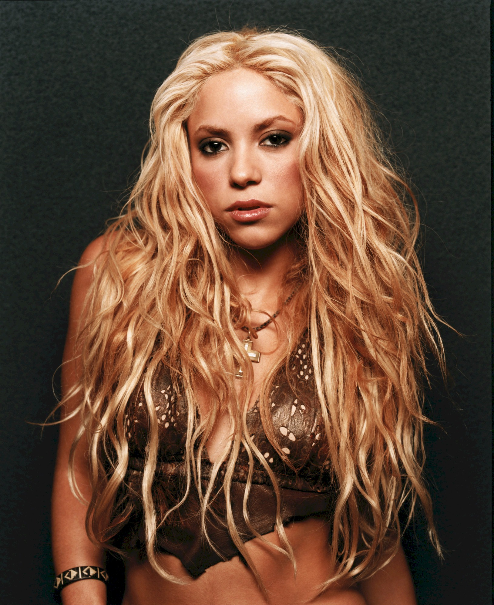 shakira bio Shakira is credited as pop singer and songwriter, la tortura, she wolf shakira, born shakira isabel mebarak ripoll is a colombian singer, songwriter, musician, record producer, dancer.